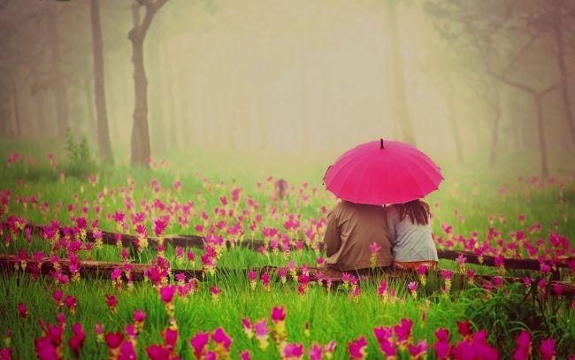 Romantic Flowers Couple Umbrella Wallpapers Pictures Photos Images Love Images Romantic Couples Romantic Flowers