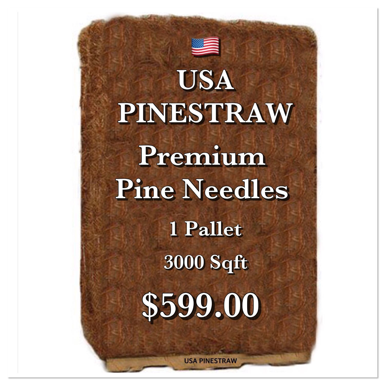 Image439 Straw Mulch Pine Pine Needles