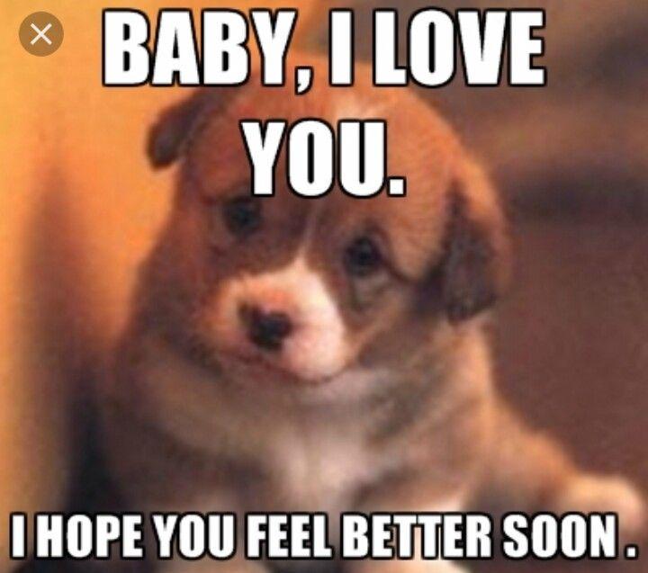 Aww Hope You Feel Better Soon Cat Puns Cat Memes Cats