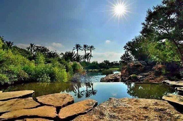 عين السخنة بيسان Outdoor Arabians Palestine