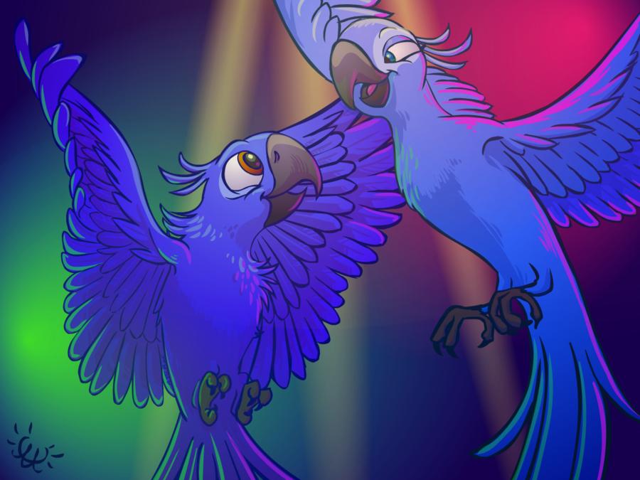 выбирают картинки попугая голубчика нам