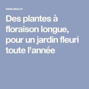 Des plantes floraison longue pour un jardin fleuri toute l 39 ann e projets essayer - Plantes pour jardiniere toute l annee ...