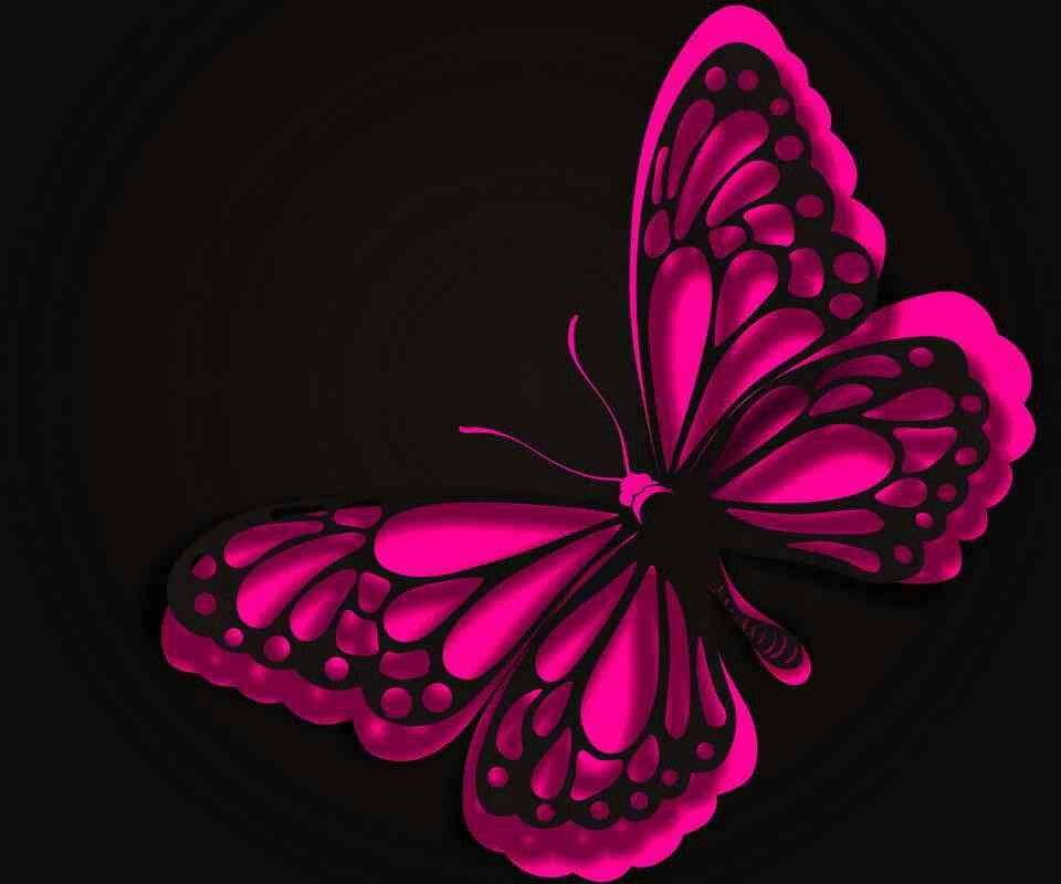 Love It Pink And Black Butterfly Hot Pink Butterfly Butterfly Wallpaper Pink Butterfly