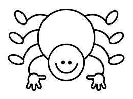 Afbeeldingsresultaat voor spinnen