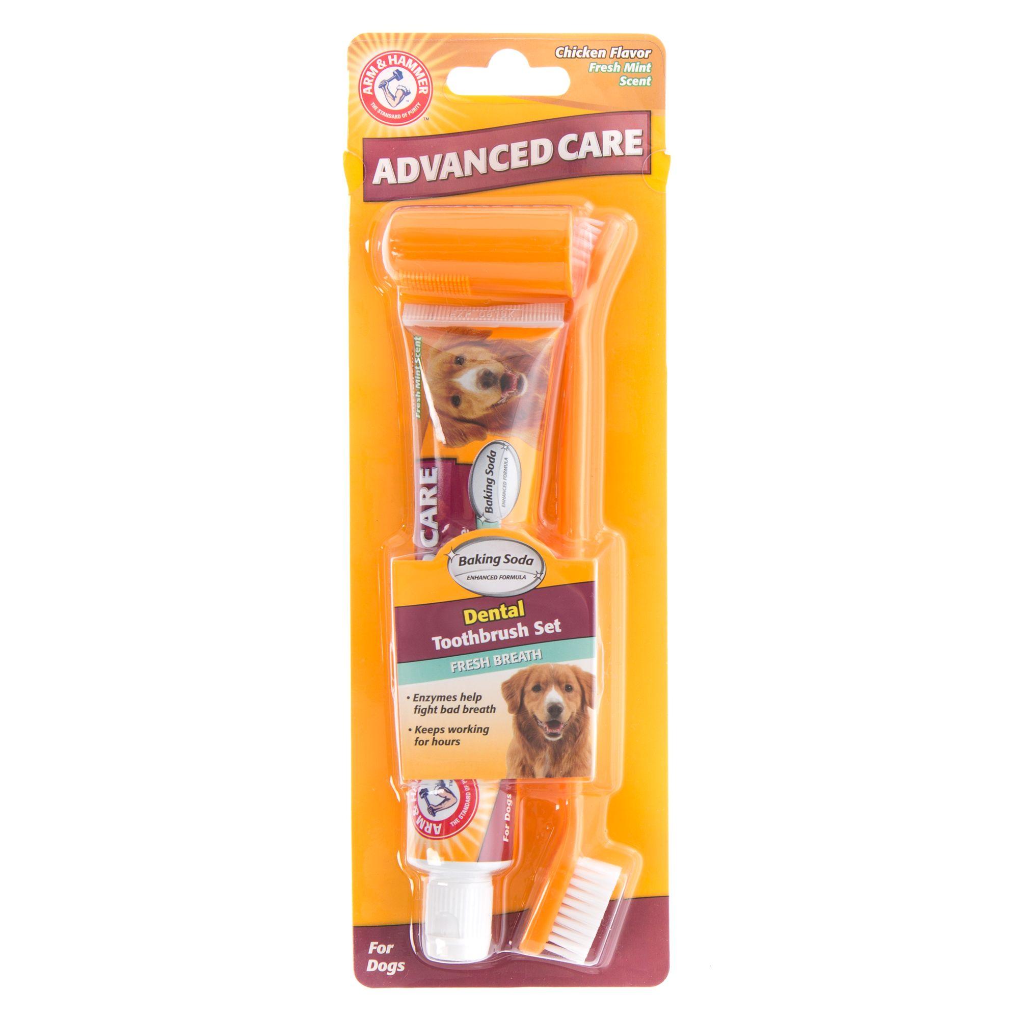 Arm and Hammer Fresh Breath Dog Dental Kit Chicken size