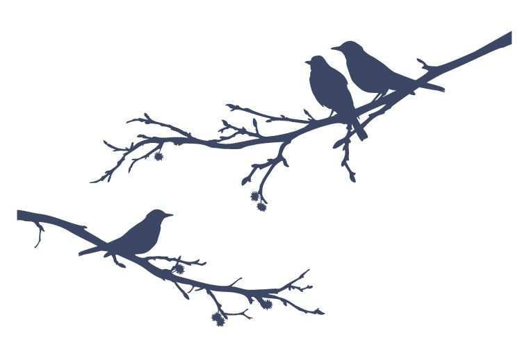 A Bird Sitting On Tree Is Never Afraid Of The Branch