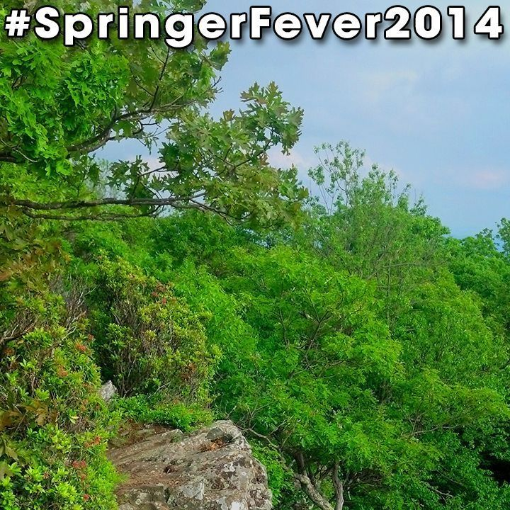 #SpringerFever2014 #AppalachianTrail #Trail #AT #BackpackingAT #Backpacking #Hiking #Hike #Latergram #Ledge #Green