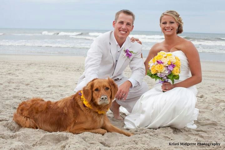Awesome picture from Outer Banks Wedding Association