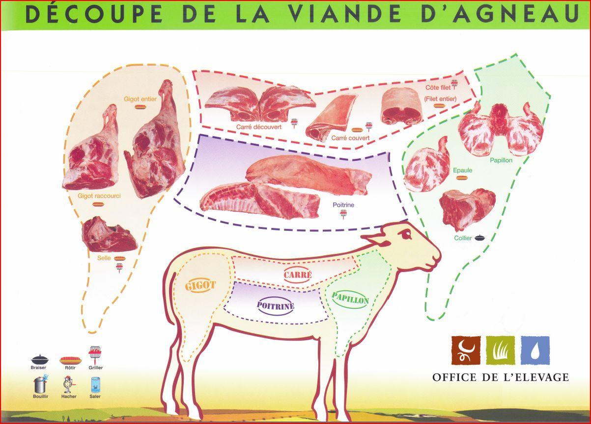 Schema decoupe viande agneau jpg 1 203 865 pixels what to use pinterest agneau boeuf et - Comment couper de la viande congelee ...