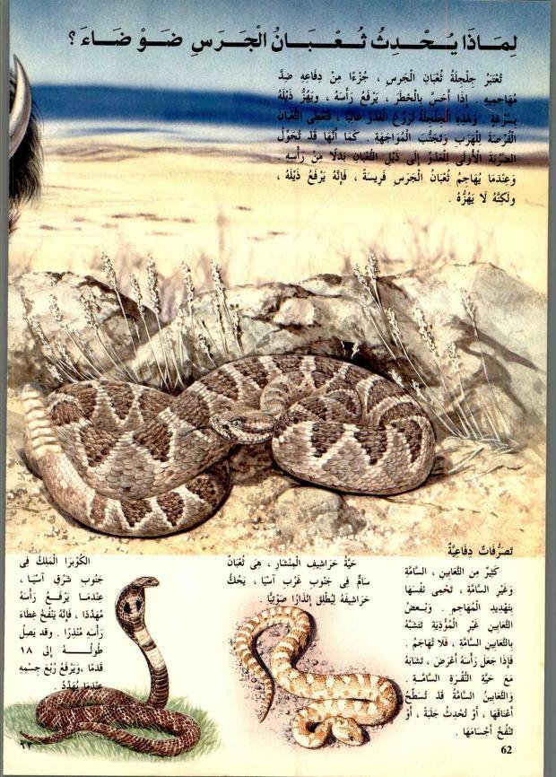 دائرة معارف القرن الحادي والعشرين للعلوم والتكنولوجيا المتطورة والطبيعية Matnawi Free Download Borrow And Streaming Internet Archive In 2021 My Books Books Animals