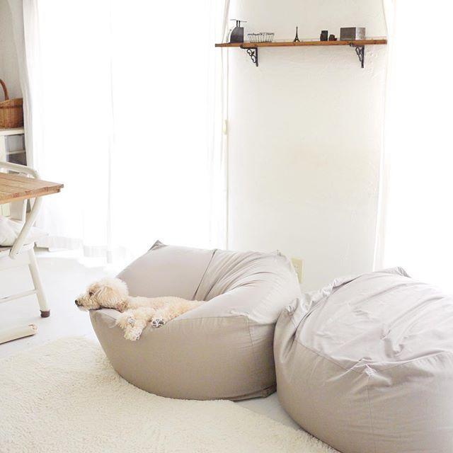 お行儀 Dogstagram Dog Petsagram Pet Poodlelove Poodle 犬バカ部 犬 犬のいる暮らし いぬのいる生活 いぬ East Dog Japan 愛犬 トイプードル Bean Bag Chair Bassinet Home Decor