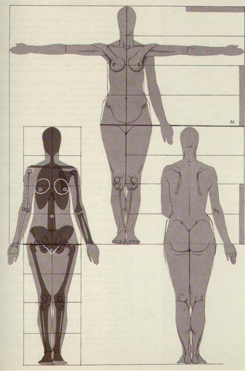 Character Design Collection Female Anatomy Daily Art Anatomy
