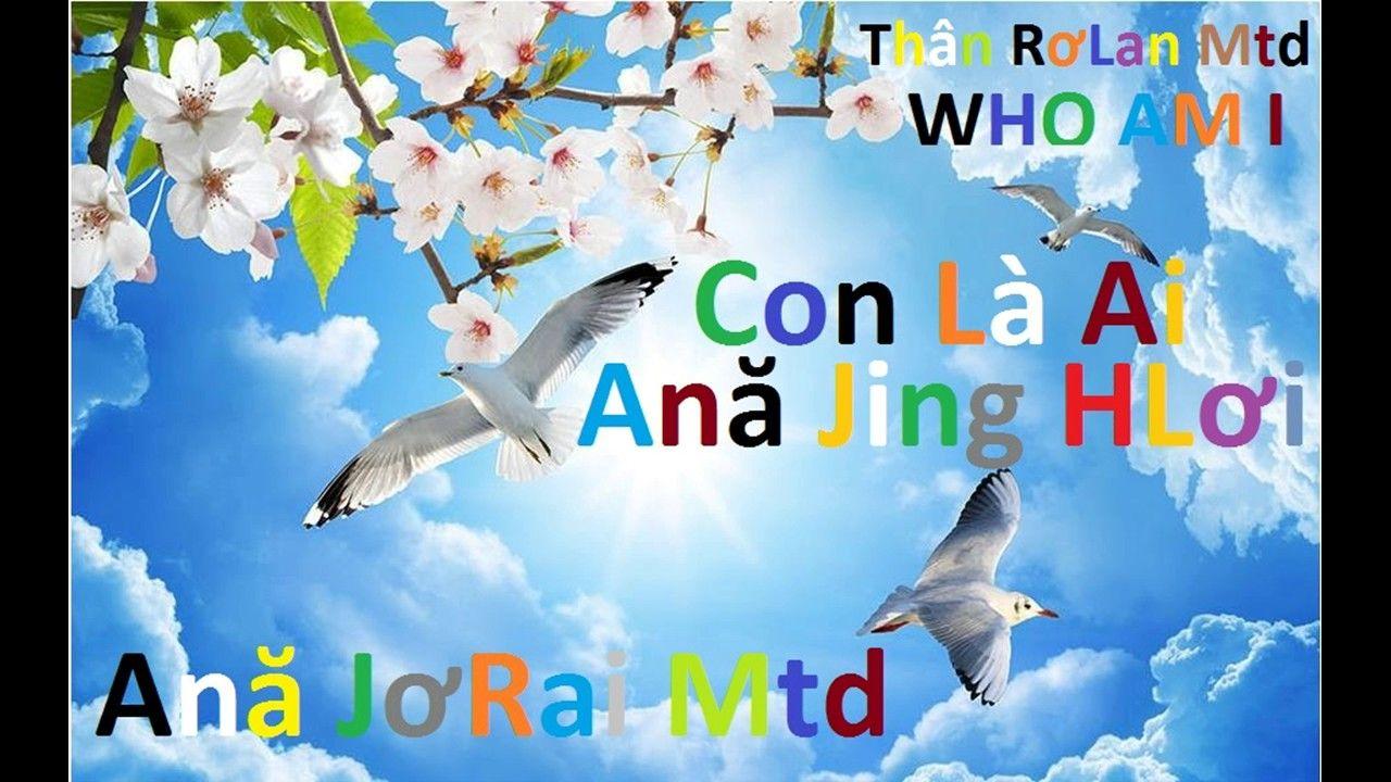 who am i {Quitar} - Thân RơLan Mtd