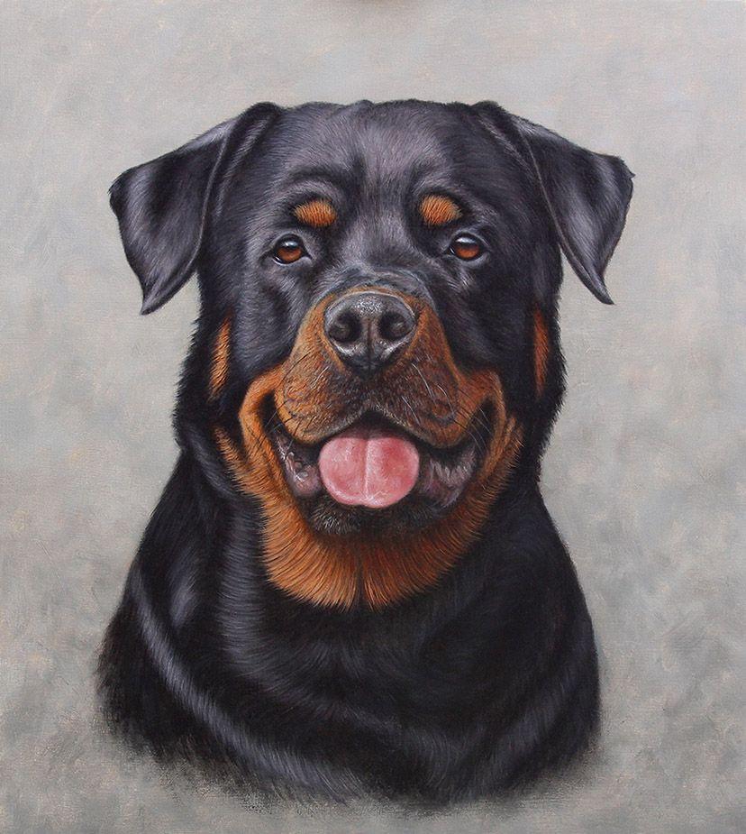 Rottweiler Portrait By Painterman33 Dog Portraits Rottweiler Tattoo Dog Art