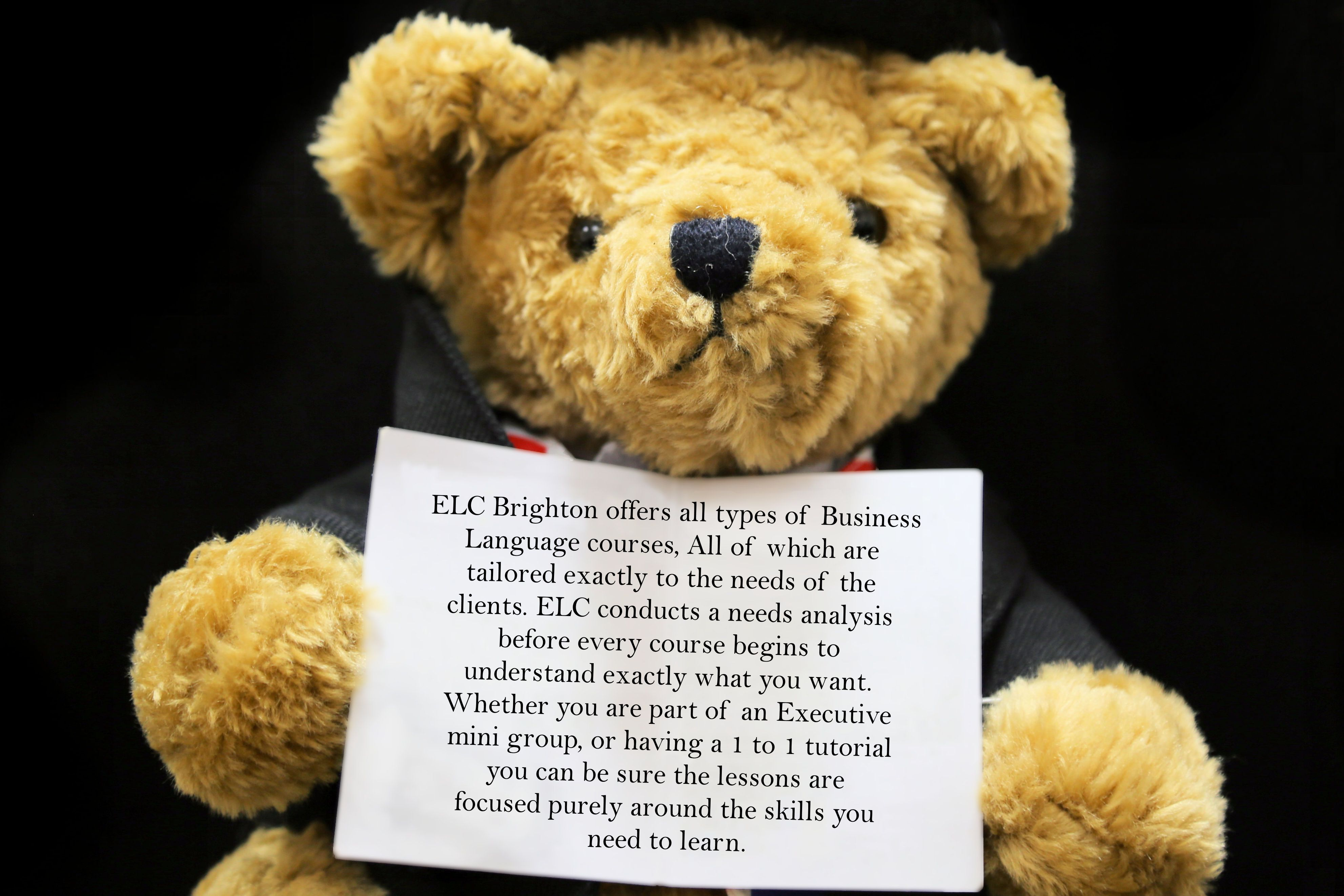 #FarringdonBear had a very interesting chat with one of our most cultured and insightful teachers Jade Blue to find out more about how our Business Language courses work here at #ELCBrighton. #farringdonsjourney @BusinessEnglishUK