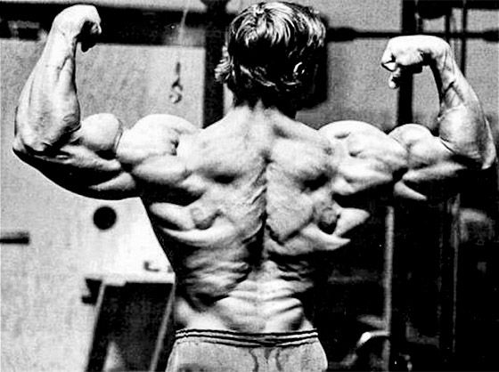 Arnold Schwarzenegger S Mammoth Chest And Back Workout Arnold Schwarzenegger Bodybuilding Schwarzenegger Bodybuilding Bodybuilding Workouts Routines