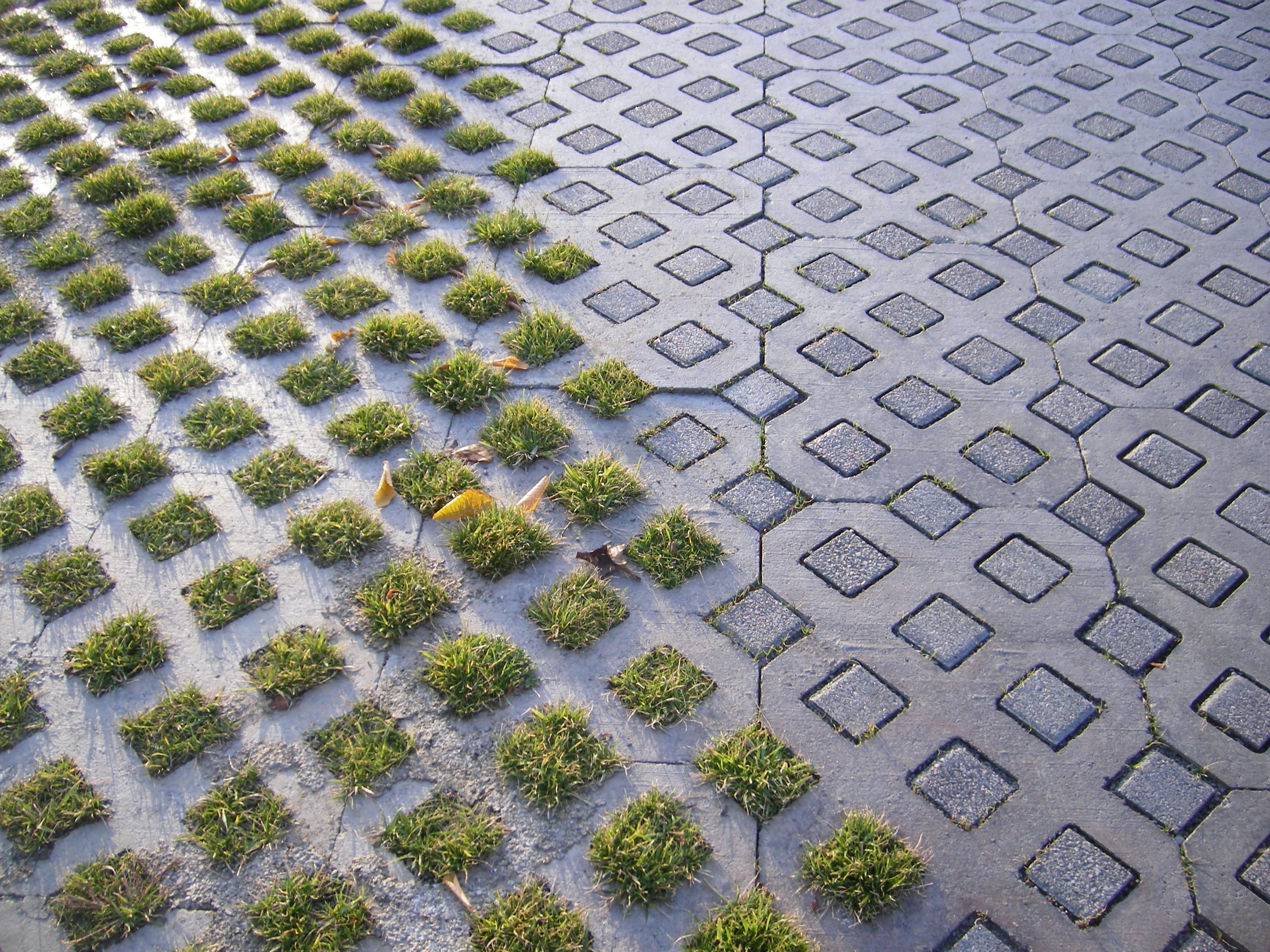 Nice way of keeping a defined path with grasscrete for Hard surface garden designs
