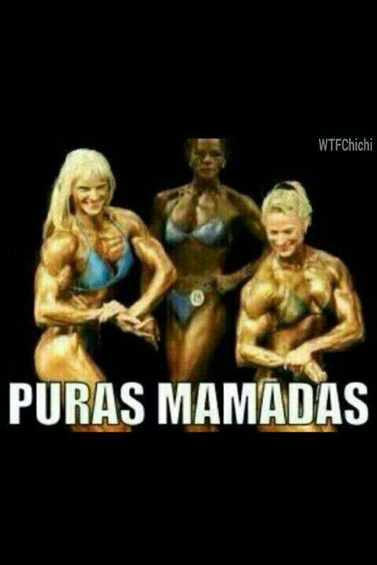9917d114eef9ac5506e4f62ea03eb223 puras mamadas funny pics pinterest memes, mexican humor and