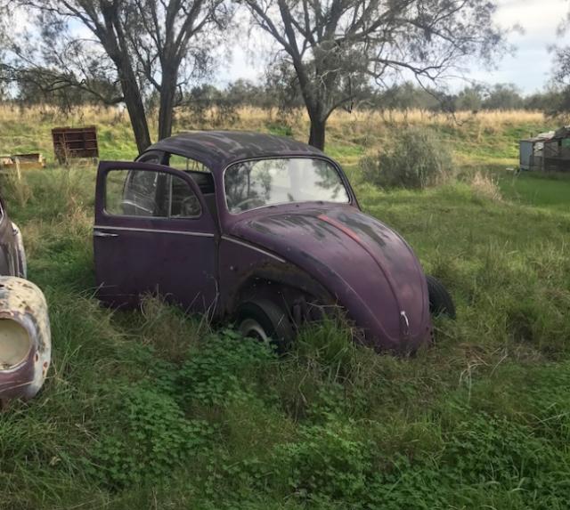 3 Volkswagen Beetles 6668 73 Cars Vans Utes Gumtree