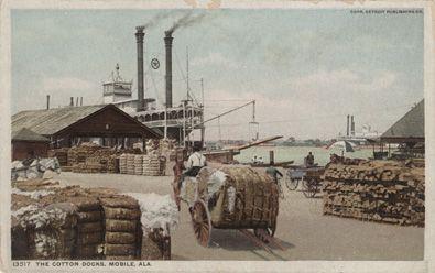 Cotton docks in Mobile, Alabama around 1890   Alabama