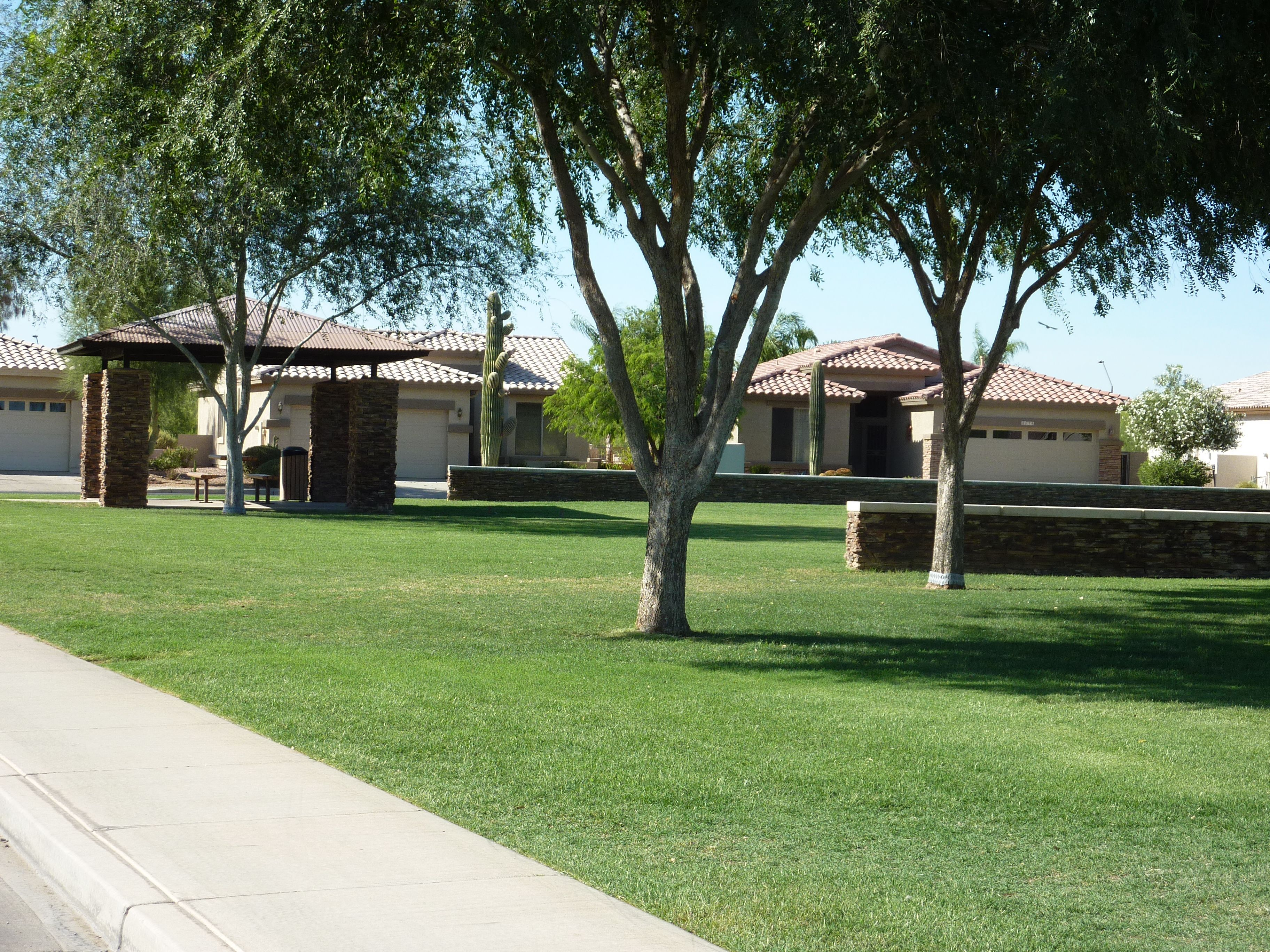 pocket park in trilogy at power ranch an active adult community in