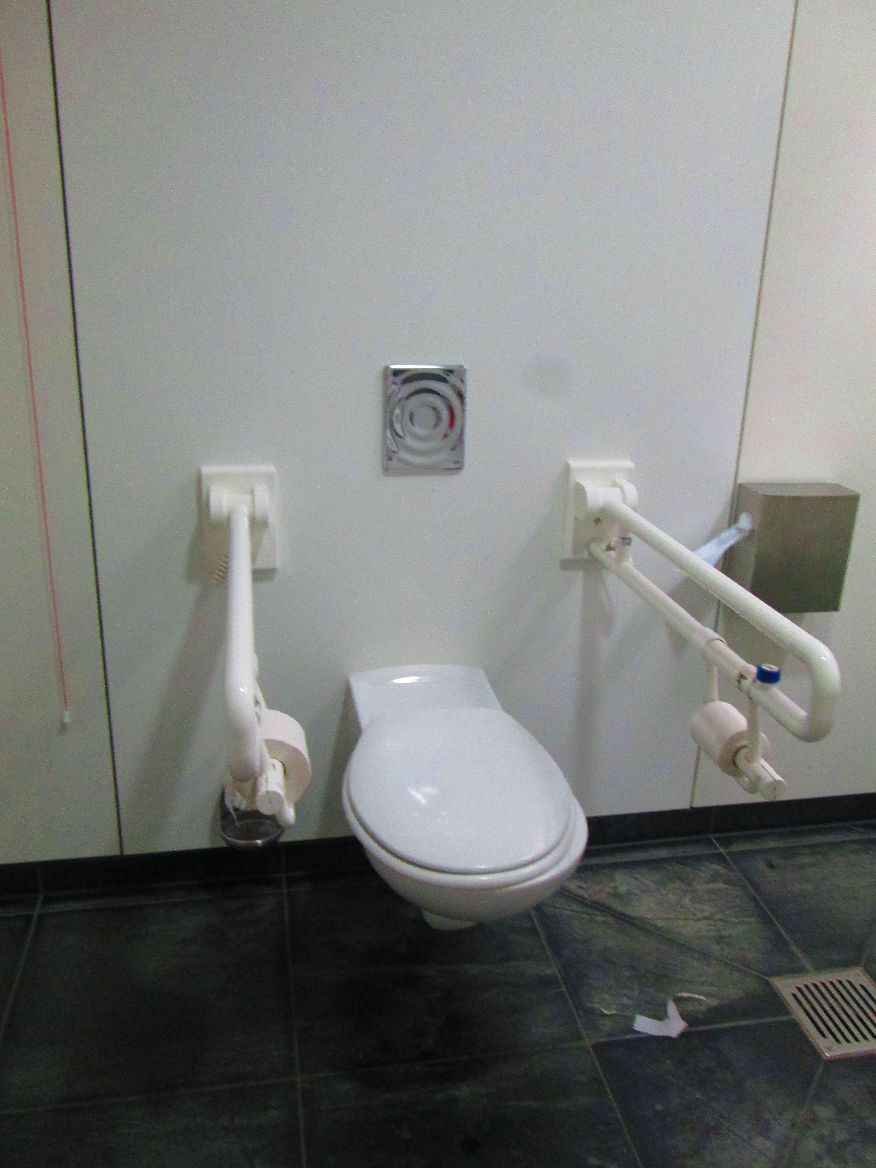 Accessible Restroom In German Museum Complete With Drop Down Grab Bars Around The Toilet For Assistance Accessible Bathroom Toilet Restroom