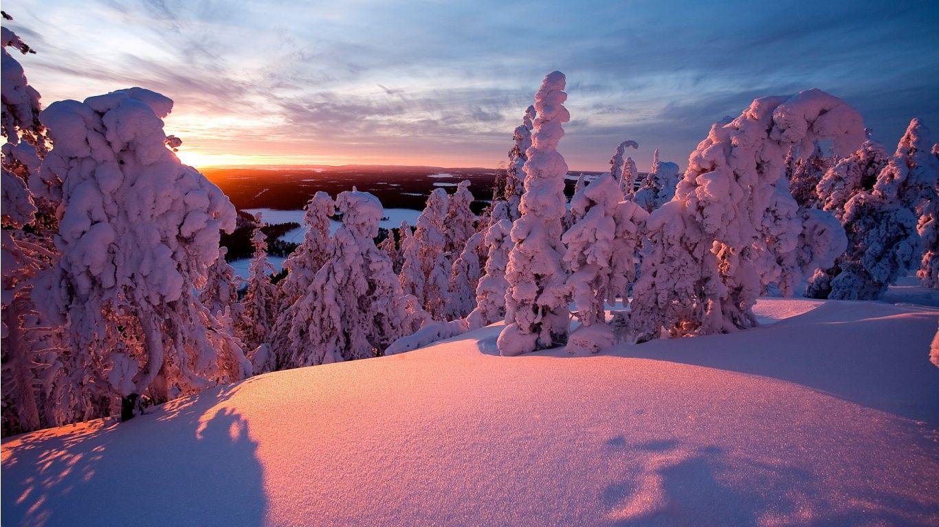 paisaje nevado con hermosa luz