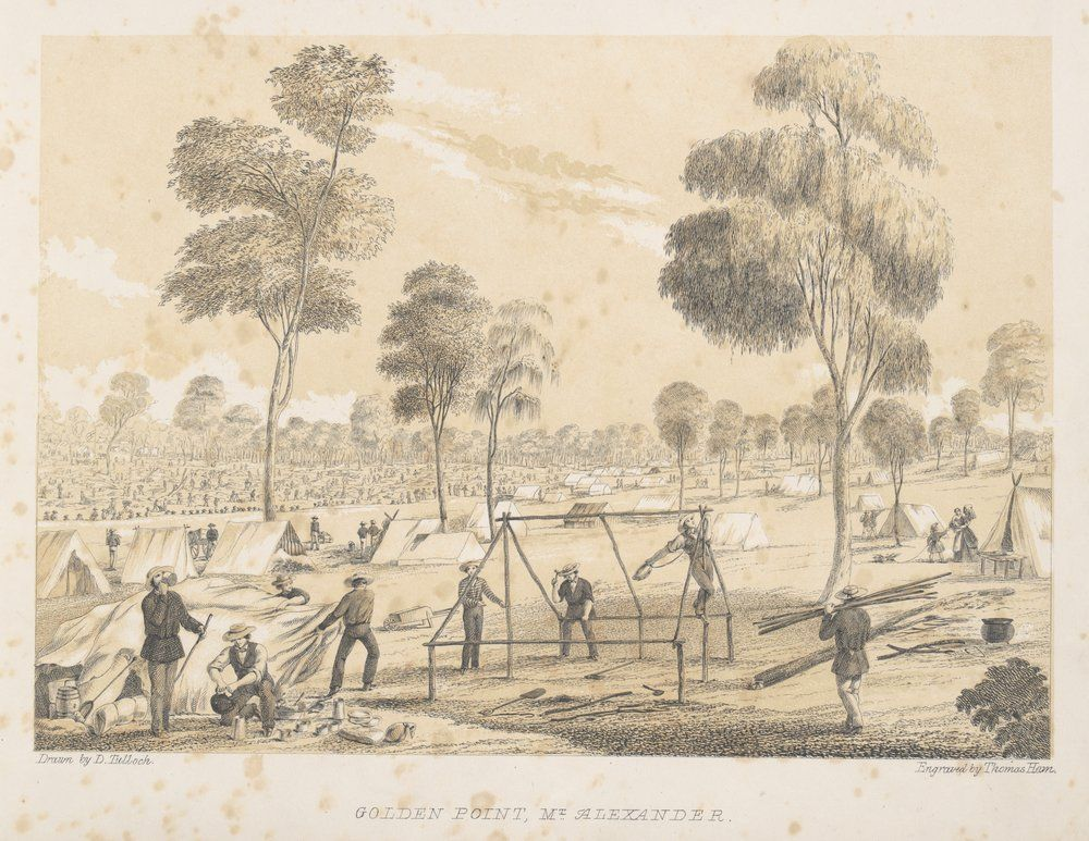 Golden Point Mount Alexander 1851 An Illustration