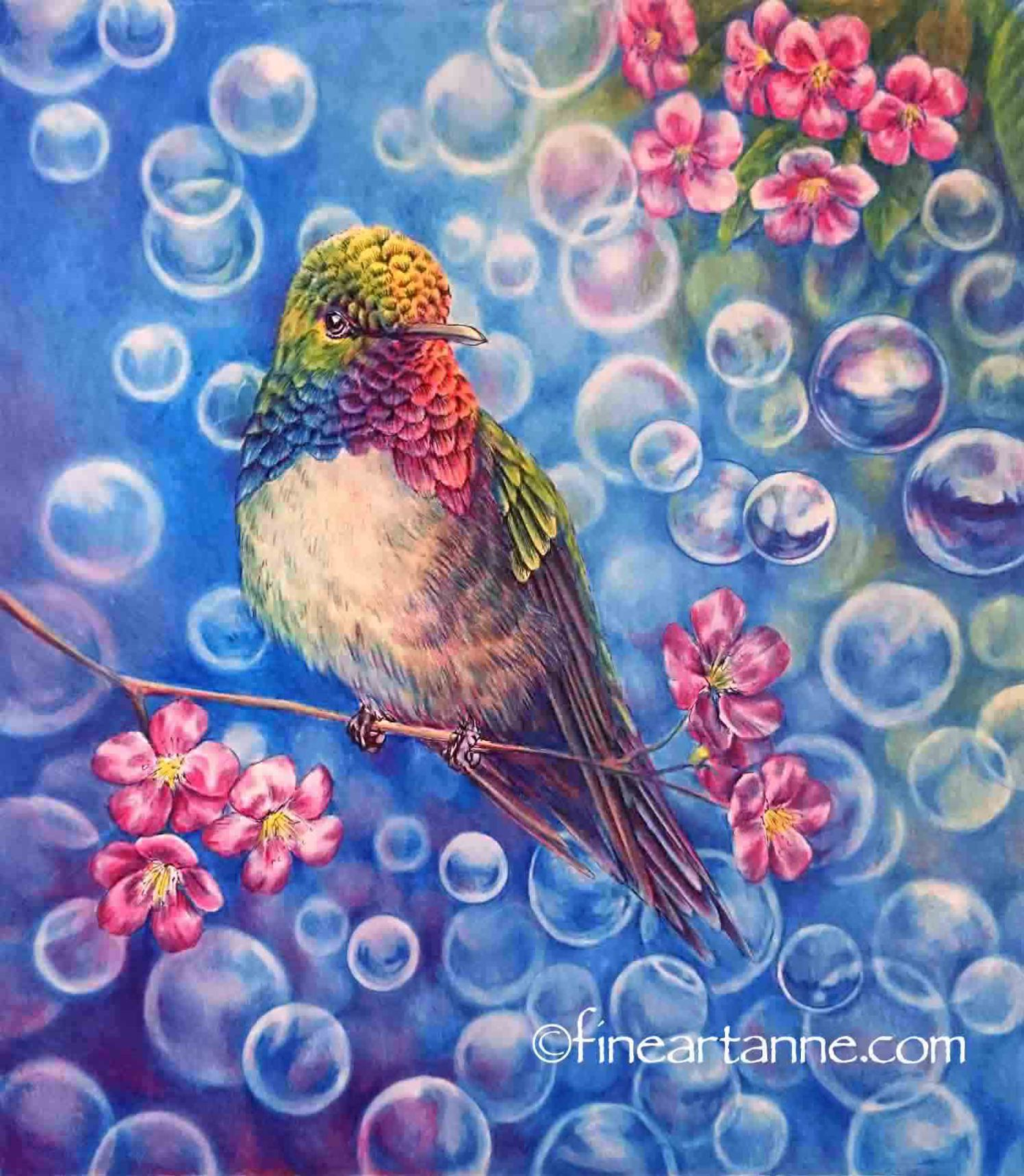 Finished Picture Of My Rainbow Hummingbird With Primary Colors Jungle Coloring Pages Bird Pictures Pencil Challenge