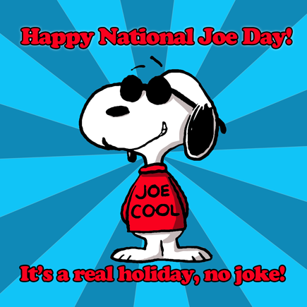 Image result for NATIONAL JOE DAY