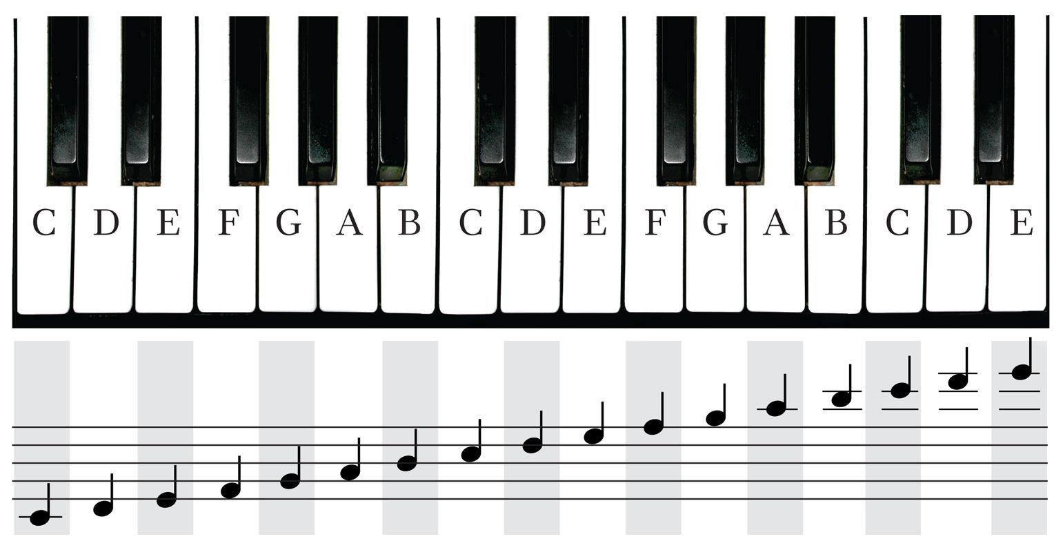 Notes On Piano Keyboard  Google Search  Music