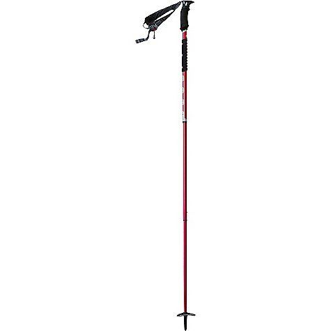 Repin this if you love the outdoors! MSR Flight 3 Trekking Pole