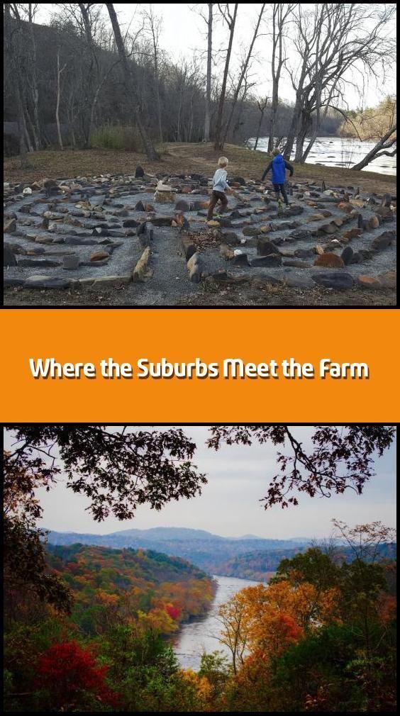 Wo die Vororte auf die Farm treffen – Entlang der Ufer von North Caroli … Wo die …   – house-moving