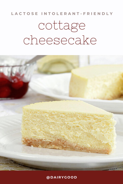 Lactose Free Cheesecake Recipe Lactose Free Desserts Dairy Free Cheesecake Recipe Lactose Free Cheesecake