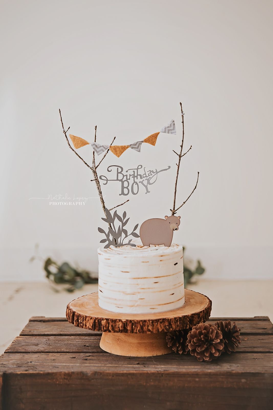 Woodland cake smash theme. Birthday boy! Cake smash
