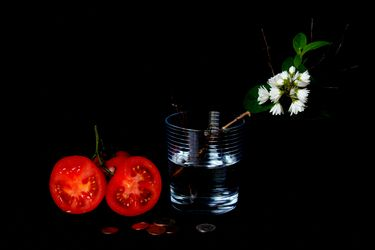 """Saatchi Art Artist STILL TIME; Photography, """"Mystery of the Obvious 06"""" #art"""