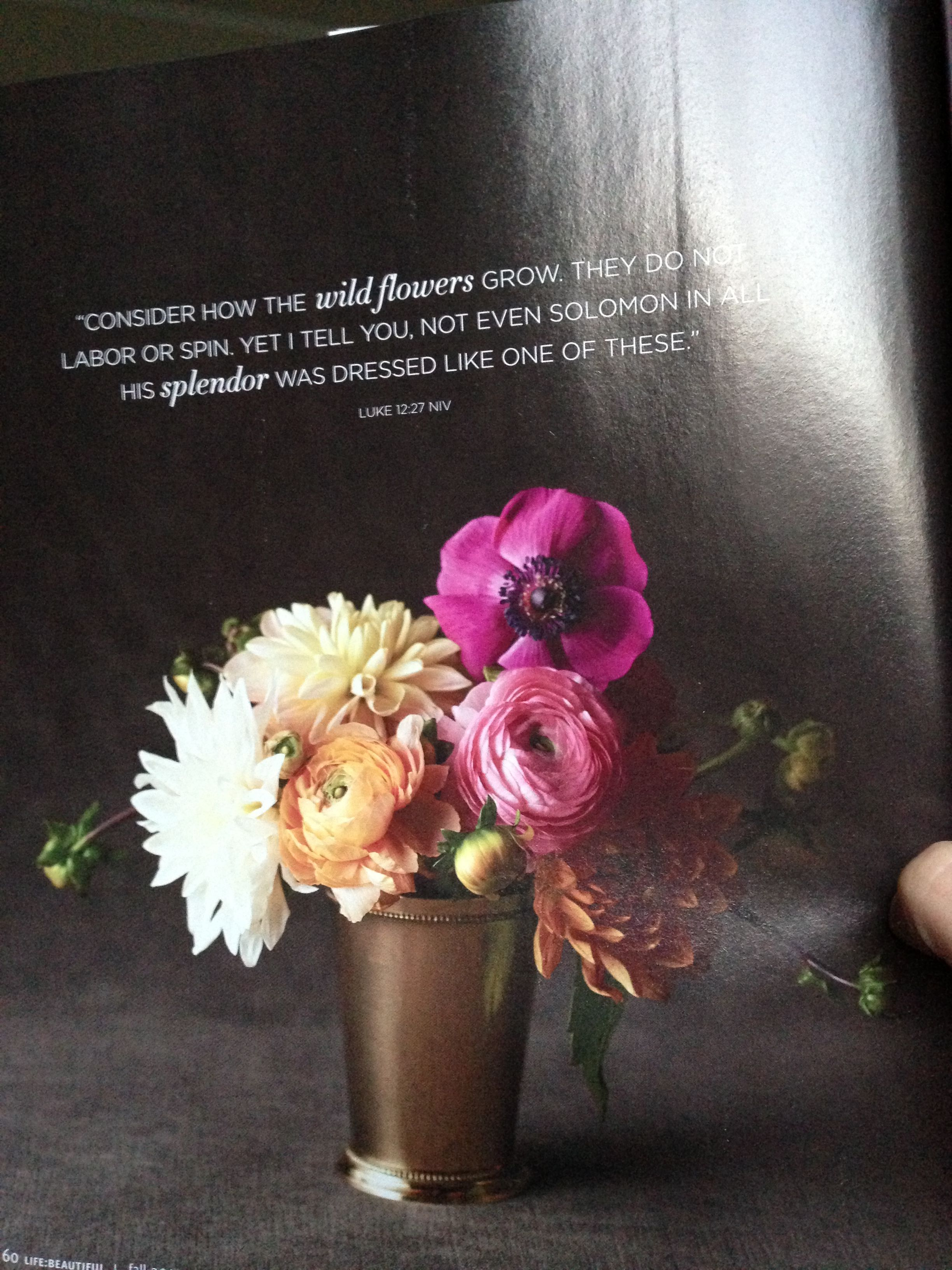 Love the black background and the gold vase u creative let it