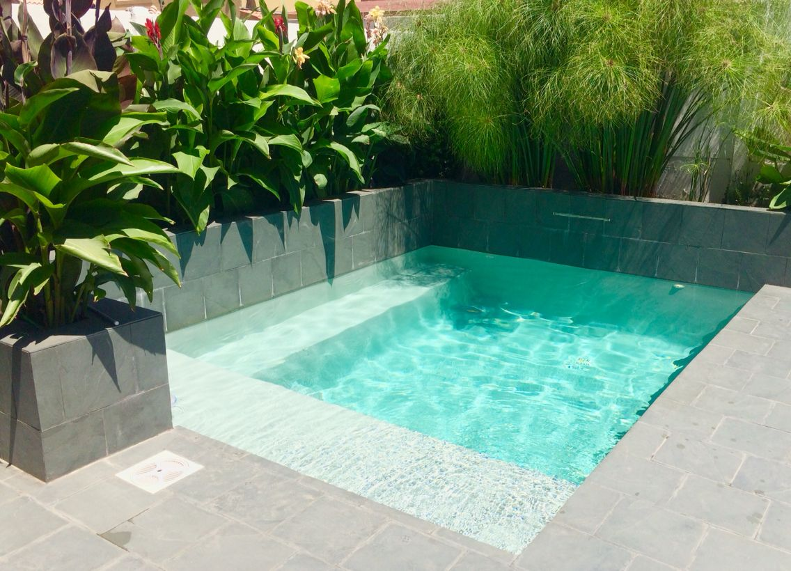 Peque a piscina tropical en chile plunge pools in 2019 - Swimming pools for small backyards ...