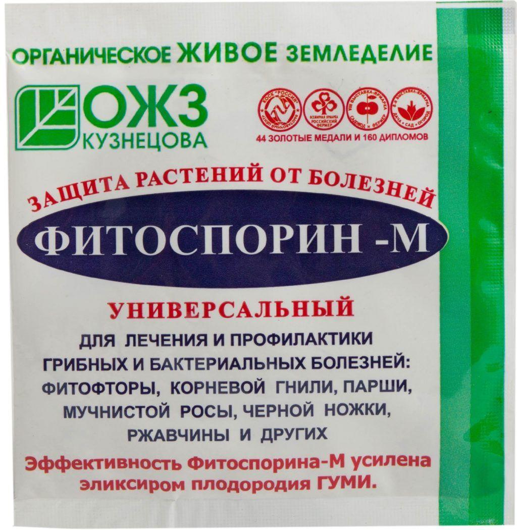 Фитофтороз Томатов: Описание Признаков, Лечение | Растения ...