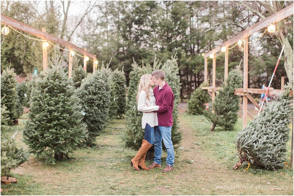 Mistletoe Acres Tree Farm Engagement Meredith Jane Photography Tree Farms Farm Photography