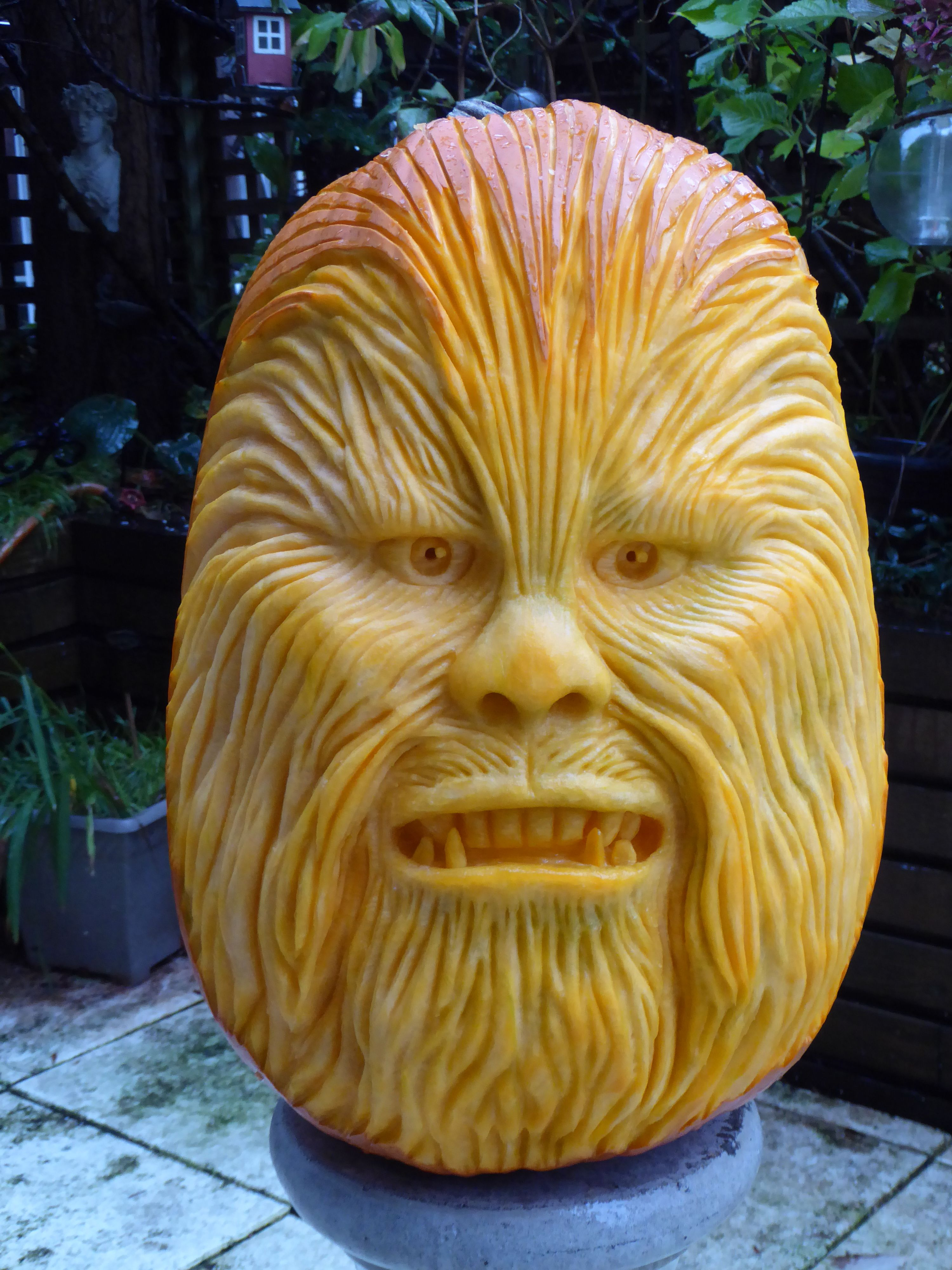 """""""Chewbacca"""" Pumpkin Carving by Clive Cooper."""