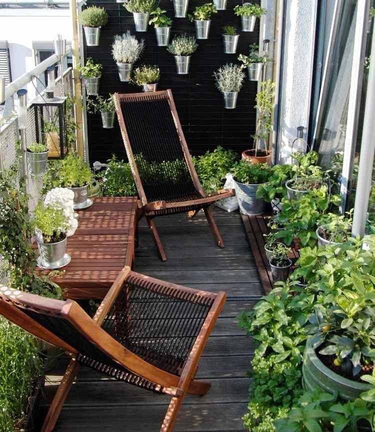 Potager balcon   choix de variétés, conseils pratiques, photos ...