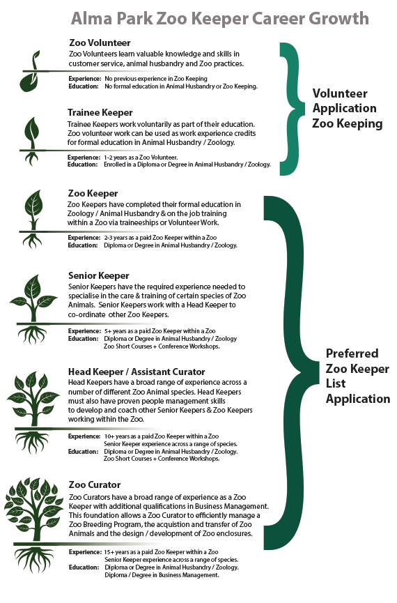 Alma Park ZooS Flow Chart Of Experience  Zookeeping