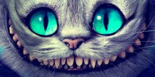 Cheshire Cat Alice Im Wunderland Katze Grinsekatze Und Alice Im