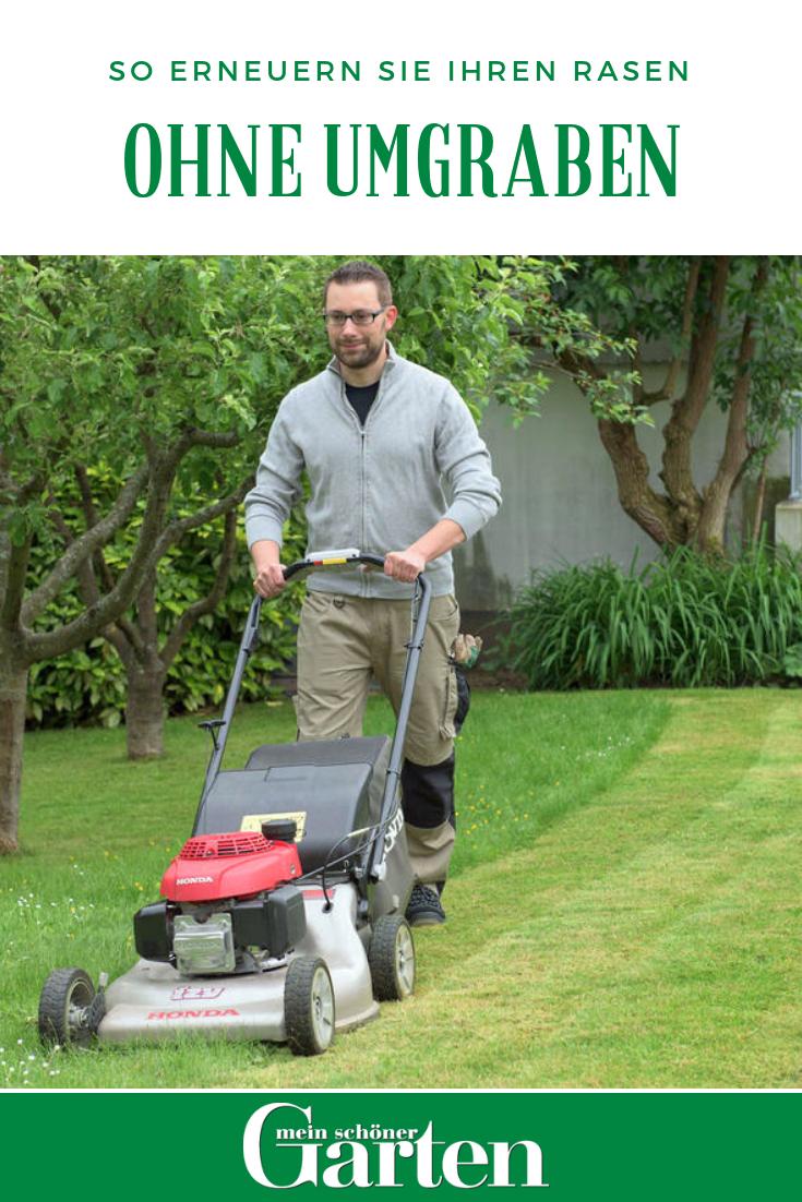 So Erneuern Sie Ihren Rasen Ohne Umgraben Rasen Erneuern Rasen Gartentipps