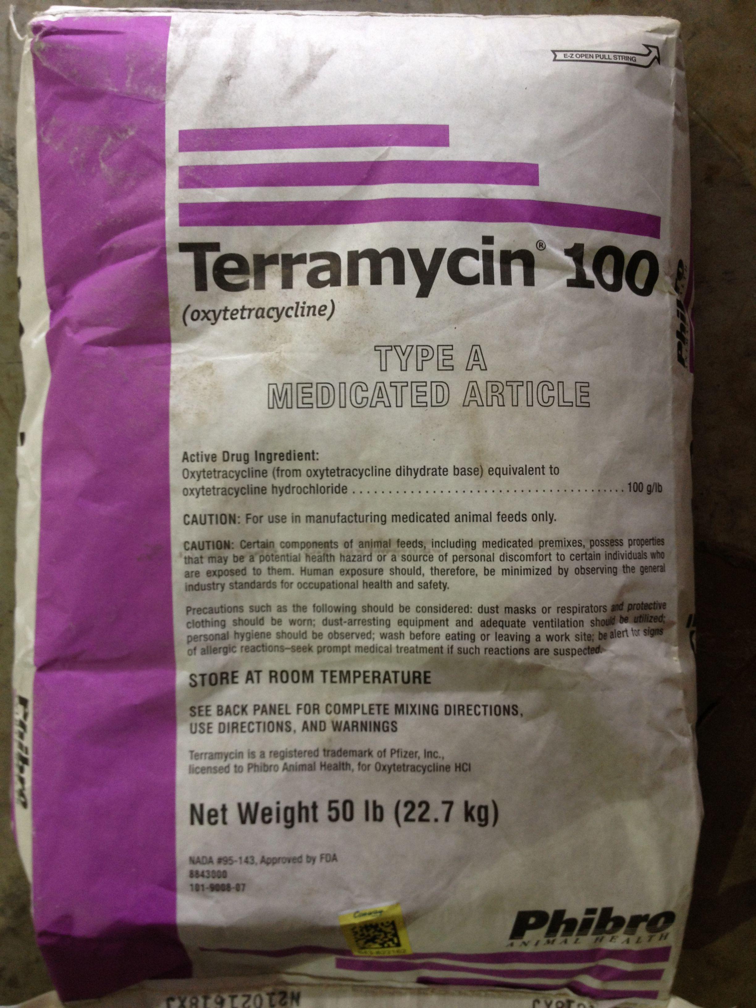 isntree hyaluronic acid gel cream review