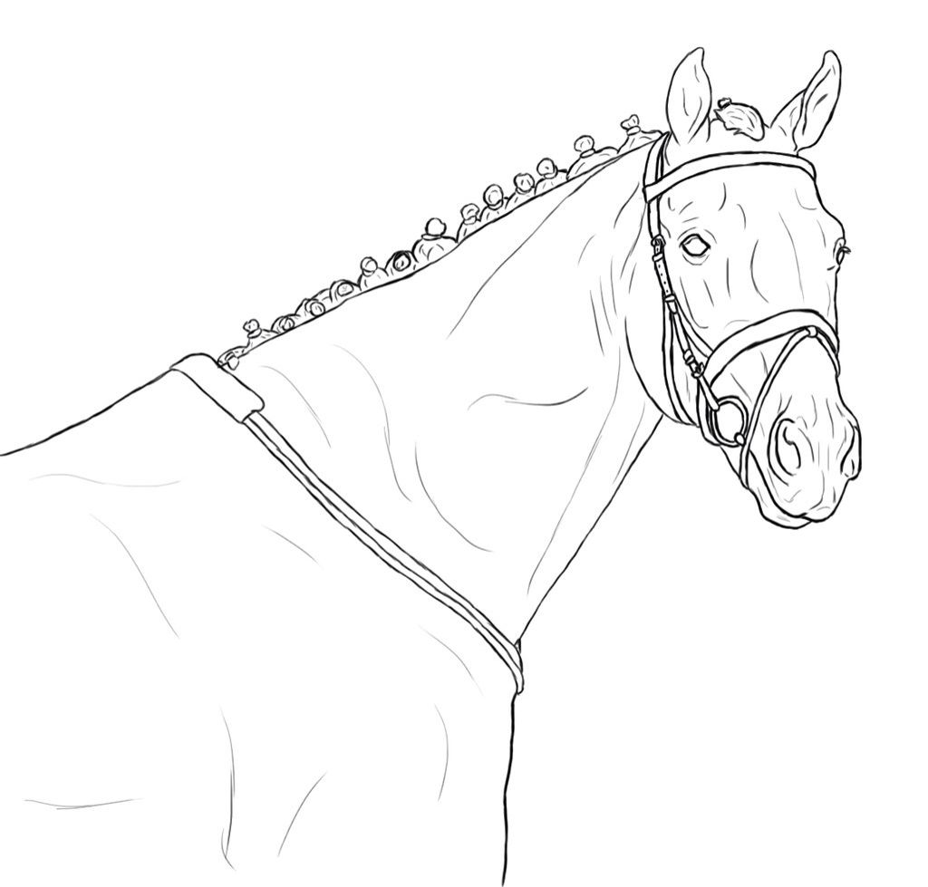 Lineart Horse Drawings Horse Coloring Pages Horse Sketch