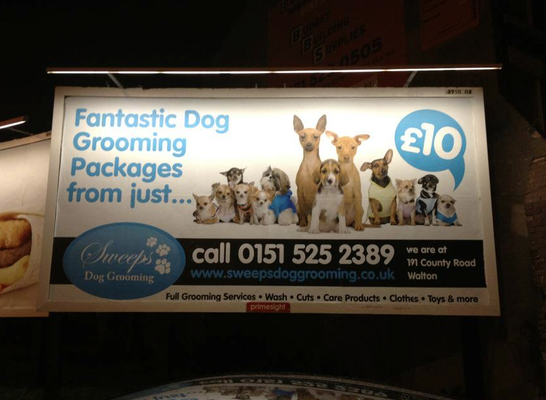 Sweeps Dog Grooming Billboard Yelp Dog School Dog Grooming