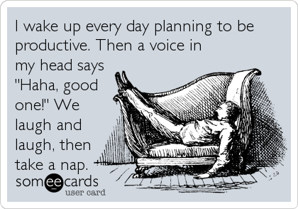 I wake up every day planning to be productive. Then a voice in my head says