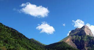 Trekking De Bernard Martagons En Boutons Et Raiponces Partout Trekking Randonnee Bouton
